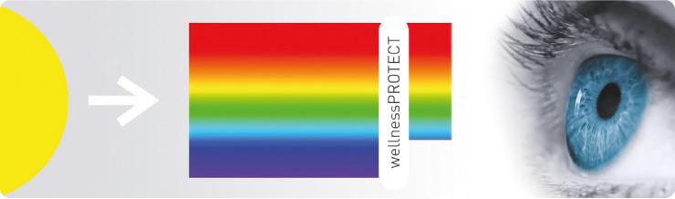wellnessprOTECT-Farbspektrum