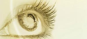 1. Tag der Augenoptik & Optometrie @ Landhotel Eichingerbauer | Keuschen | Oberösterreich | Österreich
