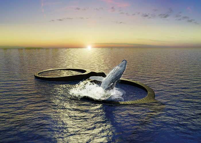 Zweitens hat MIDO beschlossen den Buckelwal zu ehren, der vor kurzem von der Liste der vom Aussterben bedrohten Tierarten gestrichen wurde.